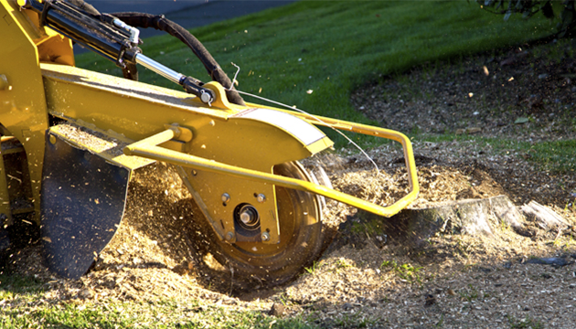 Lawn & Landscaping Category image